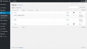 crear-tema-paginas-widgets