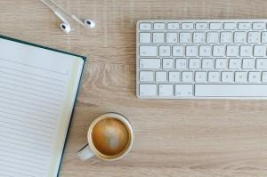 freelancer-historia